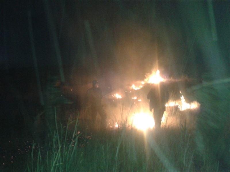 ФОТО: В Жамбылской области ликвидирован пожар