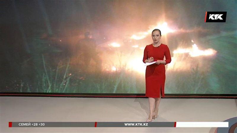 В Жамбылской области сгорело 100 гектаров пастбищ