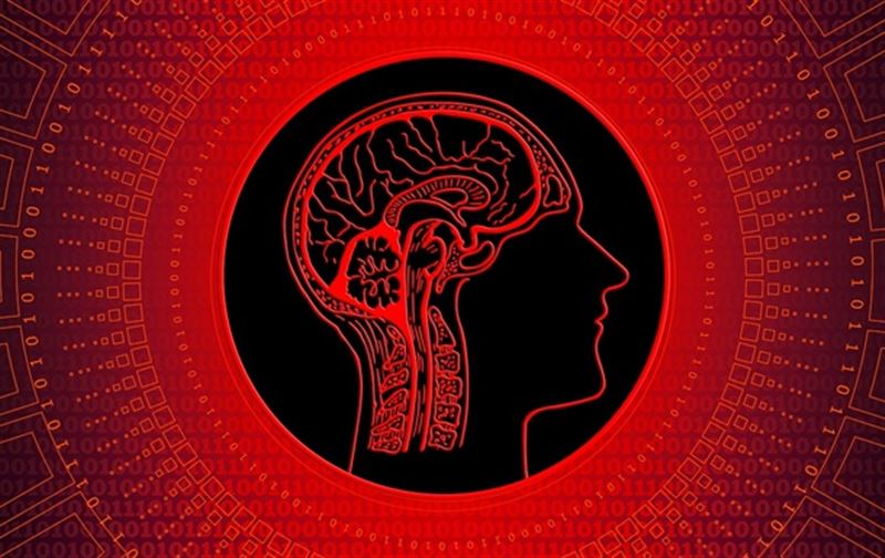 Уровень интеллекта человечества стремительно деградирует — ученые