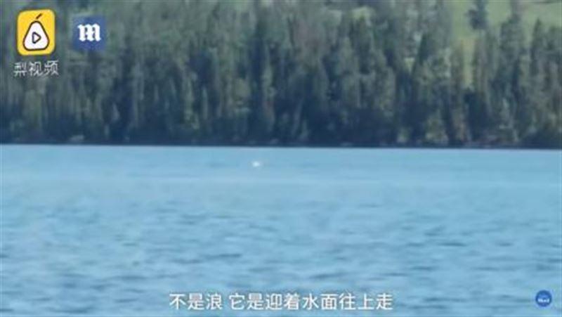 Плавающее в озере загадочное существо засняли на видео в Китае