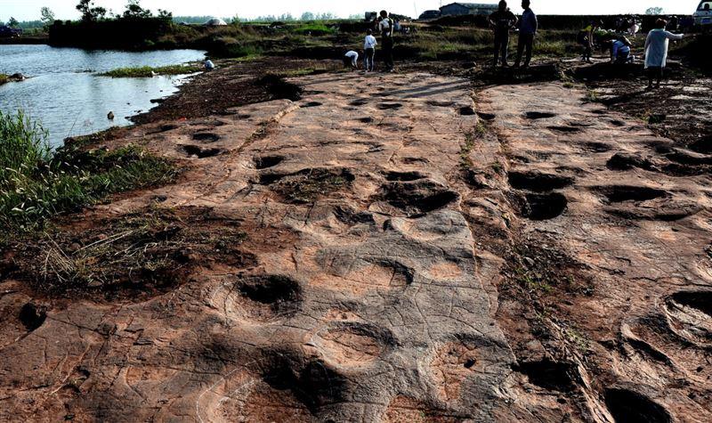 В Китае обнаружили следы динозавров, живших около 120 миллионов лет назад