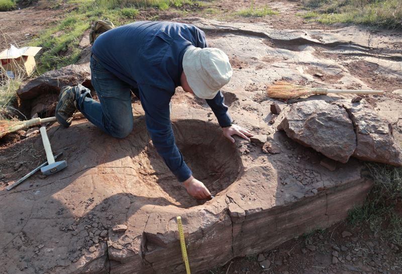 ФОТО: 120 миллион жыл бұрын тіршілк еткен динозаврлардың ізі табылды