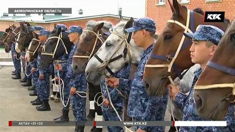 Патрулировать Боровое будут на лошадях
