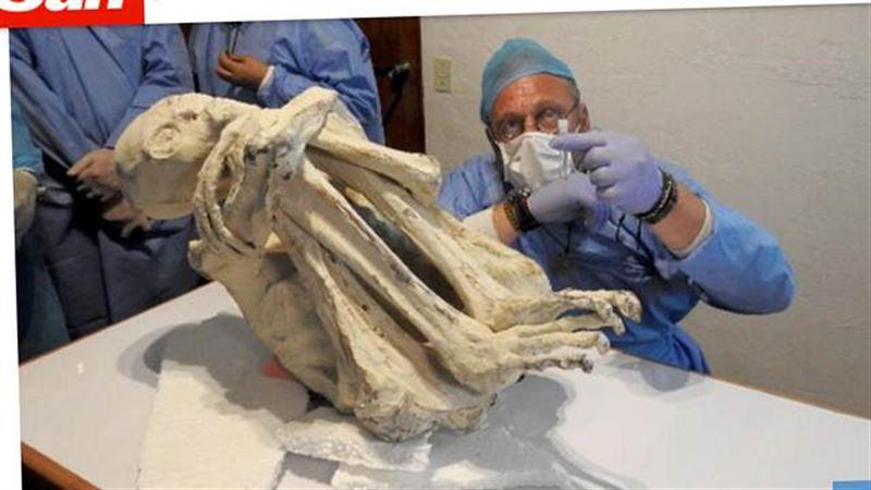 Трехпалая мумия пришельца из Перу может принадлежать человеку из будущего