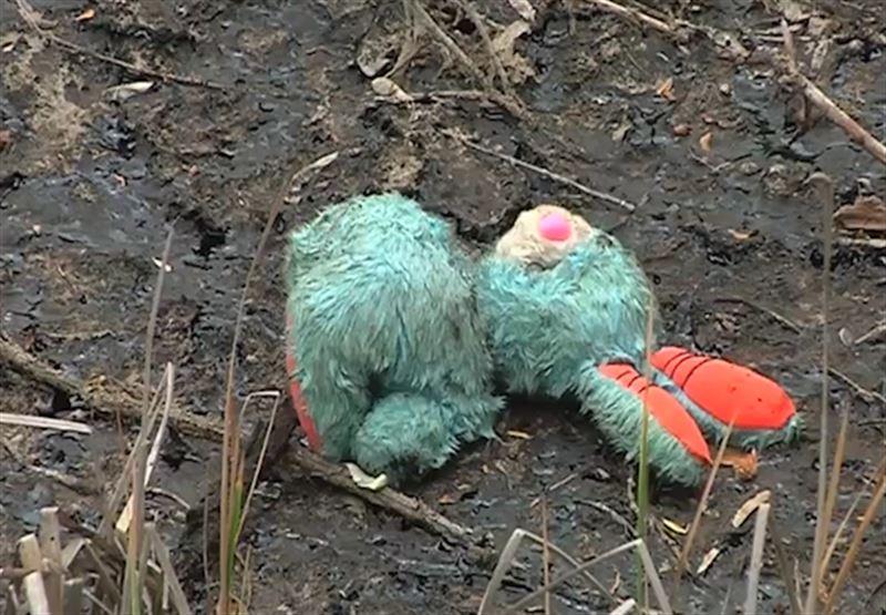 Жители Усть-Каменогорска обеспокоены скоплениями маслянистых пятен
