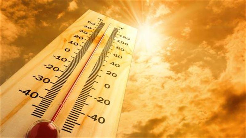 Из-за жары в Канаде погибли 17 человек
