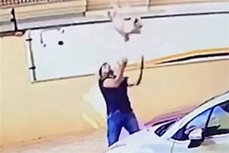 Мужчина поймал собаку, упавшую с девятого этажа