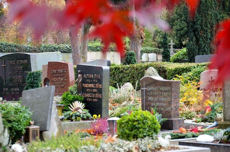 В Германии разыграют в лотерею места на кладбище