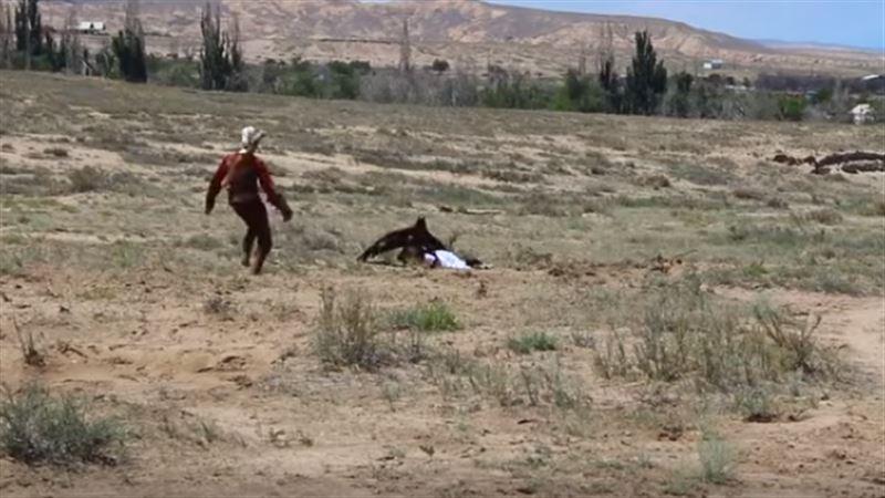 На этнофестивале в Киргизии беркут атаковал восьмилетнюю девочку