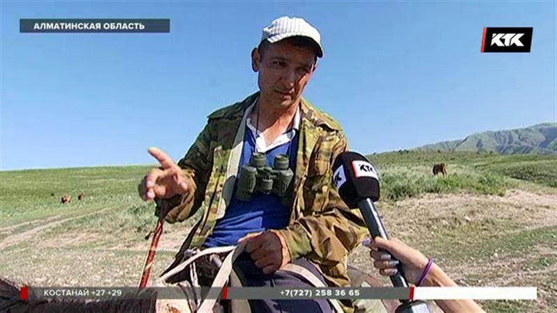 Пастух уверяет, что незнаком с пропавшим в горах 7-летним мальчиком