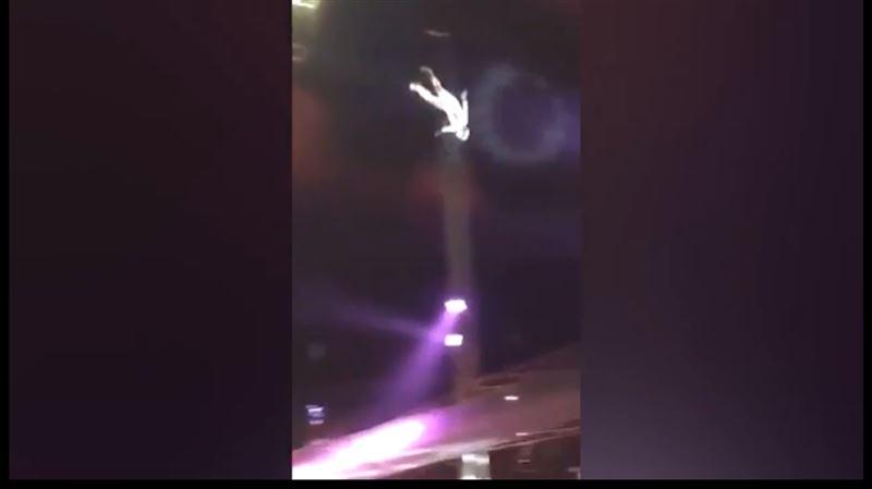 В цирке человек-ядро угодил в клоуна во время неудачного выстрела