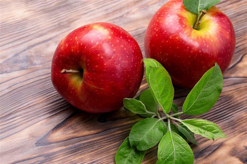 Ученые выяснили, что райский сад, где выросло «яблоко раздора», находился в Казахстане