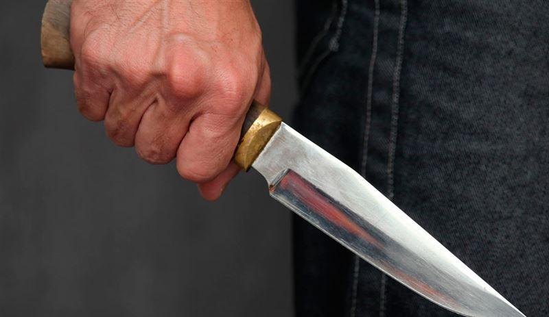 Житель Карасайского района пытался зарезать несовершеннолетнего соседа