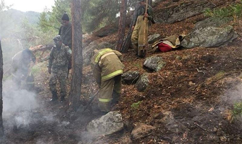 В Уланском районе ВКО вспыхнул лесной пожар