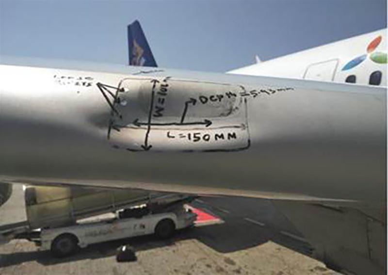 Казахстанская авиакомпания рассказала о проблеме, связанной с птицами