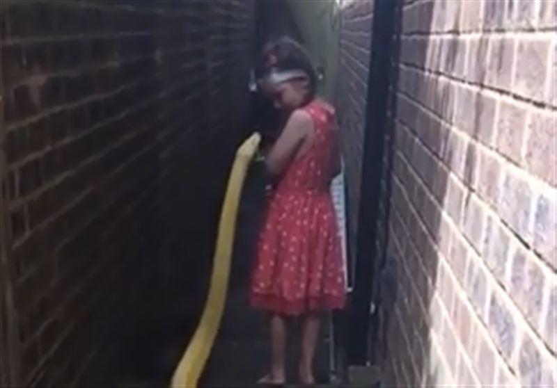В Сети появились кадры с маленькой девочкой, гуляющей с огромным питоном