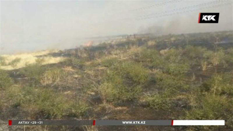 Пожар в горах Жамбылской области удалось потушить