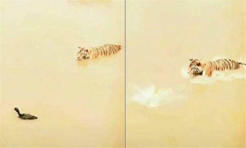 Умная утка оставила тигра без обеда