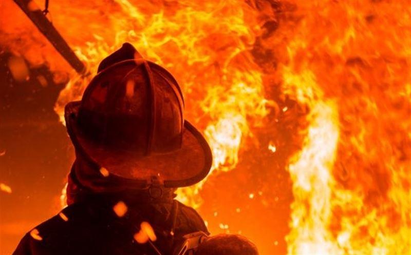 В Усть-Каменогорске во время пожара погибли редкие животные