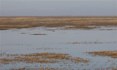 Водолазы отыскали тело меньшего избратьев, утонувших вКарагандинской области