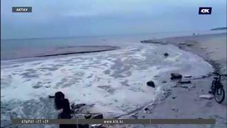 Нашли тех, кто сливал в Каспий отходы