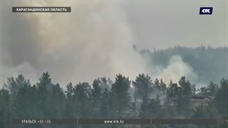 Локализовать пожар в природном парке помогли дождь и похолодание