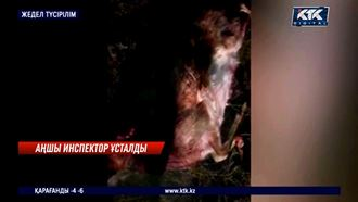 Табиғат инспекторы аң атып жүрген жерінен ұсталды – Түркістан облысы
