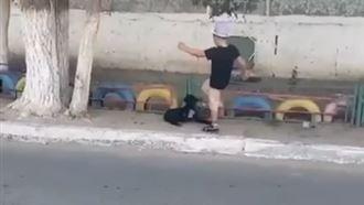 Ребенок пинал щенка в Жезказгане