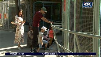 Полчища тараканов испугали посетителей Алматинского зоопарка